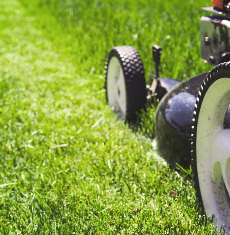 lawn care and mowing in Lynden, wa