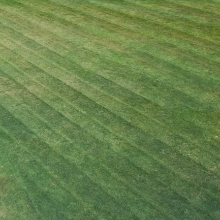 Aerate Your Lawn for Growth and Health
